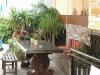 neos-marmaras-hotel-star-paradise-3