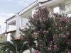 pefkohori-vila-dimitris-flower-4