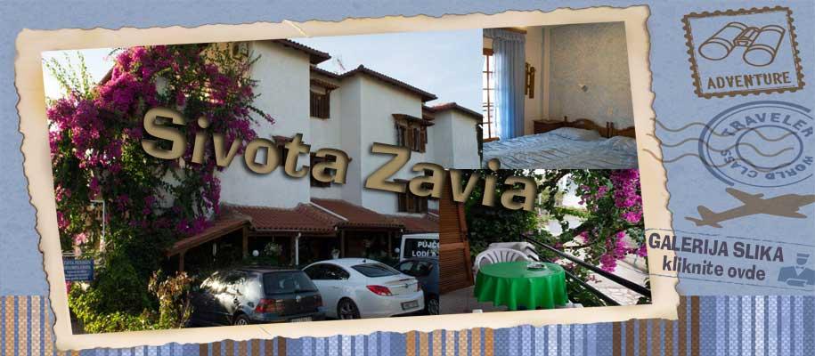 Sivota Zavia SLIKE