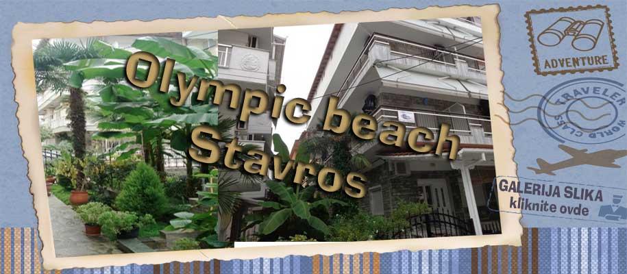 Olympic beach vila Stavros